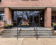1000 East 53Rd Street Unit 317, Chicago image