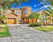 8352 Old Town Drive, Tampa image