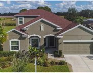 11225 Coventry Grove Circle, Lithia image