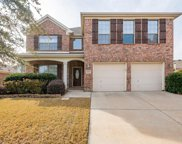 4308 Silent Brook Court, Fort Worth image