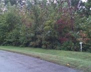 15512 Chesdin Manor Drive, Chesterfield image