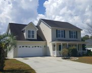 7204 Courtney Pines Road, Wilmington image