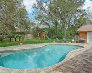1868 DOVE RIDGE CT, Jacksonville image