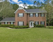 7943 VINEYARD LAKE RD N, Jacksonville image