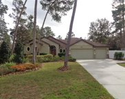 13502 Gopher Pond Court, Hudson image