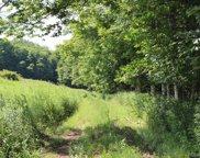 Treyz Hill  Road, Livingston Manor image