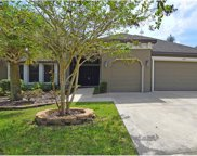 15723 Starling Water Drive, Lithia image