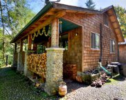 1171 Satsop Maple Glen Rd, Elma image