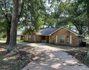 1523 S Persimmon Street, Tomball image