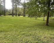 7496 Shady Park Dr, Greenwell Springs image
