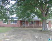 4208 Cogswell Ave, Pell City image