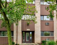 4428 Arbor Circle Unit 2, Downers Grove image