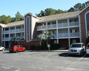 4834 Innisbrook Ct. Unit 1106, Myrtle Beach image