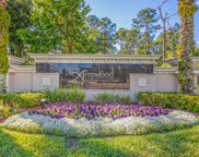 6703 ARCHING BRANCH CIR, Jacksonville image