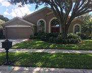 3979 Jenita Drive, Palm Harbor image