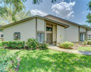 1819 Cypress Trace Drive, Safety Harbor image