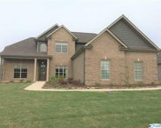 22543 Bluffview Drive, Athens image