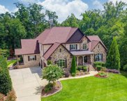 9905 Strike The Gold  Lane, Waxhaw image