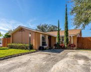 8606 Spartan Court, Tampa image