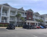 1008 Ray Costin Way Unit 306, Murrells Inlet image