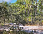 168 Acres Off Old Georgetown Rd, Shallotte image