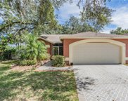 2502 Wrencrest Circle, Valrico image
