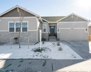 6608 Amur Lane, Castle Rock image