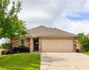 19713 Drifting Meadows Dr, Pflugerville image