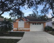 6640 Summer Cove Drive, Riverview image