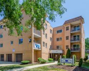 6877 North Overhill Avenue Unit 43, Chicago image