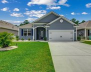 417 Cypress Springs Way, Little River image