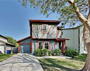 10505 Marshitahs Way, Austin image