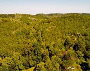 75 ACRES Palmer Hollow Rd, Bybee image