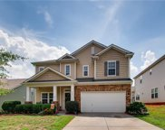 6807  Barefoot Forest Drive, Charlotte image