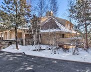 1009 Hummingbird Drive Unit B2, Castle Rock image