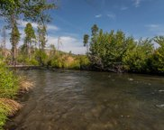 Brown Trout, Hat Creek image