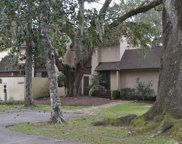 30 Peter Horry Ct Unit 18-y-3a, Georgetown image