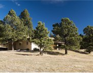 13340 South Perry Park Road, Larkspur image