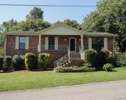100 Red Maple Ct, Hendersonville image