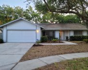 1521 Caird Way, Palm Harbor image