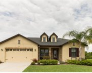 7124 Redroot Court, Wesley Chapel image