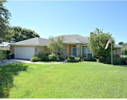 9209 Summer Breeze Court, Clermont image