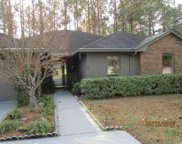 111 Juneberry Lane, Conway image