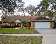2325 Sweetwater Cc Place Drive, Apopka image