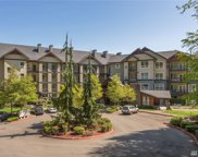 18707 SE Newport way Wy Unit 208, Issaquah image