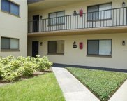 11714 Raintree Lake Lane Unit A, Temple Terrace image