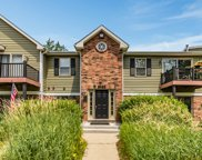 1340 Mc Dowell Road Unit 202, Naperville image