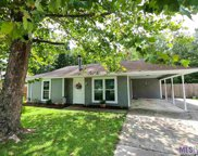 13159 She Lee Place Rd, Gonzales image