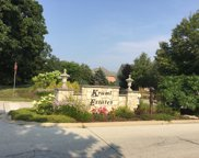 105 Kraml Drive, Burr Ridge image