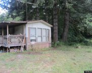 26832 Alsea Deadwood Hwy image